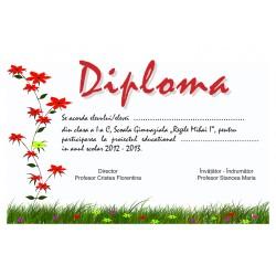 Diploma APD004