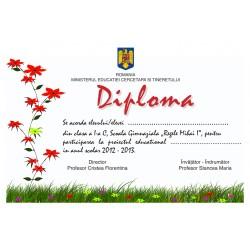 Diploma APD005